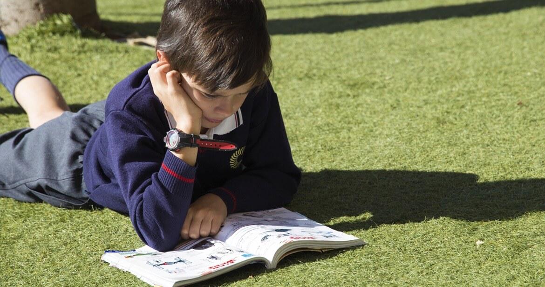 Despertar el interés por la lectura en Attendis